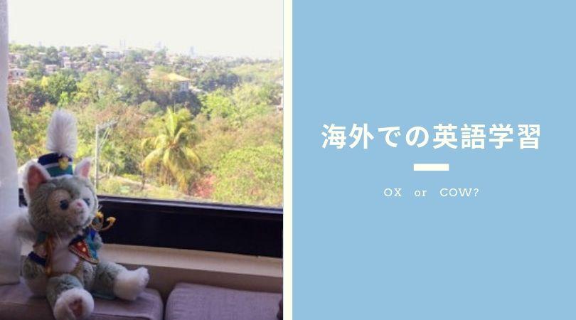 海外での英語学習
